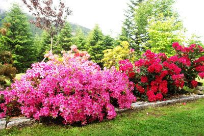 Üppige Blumenpracht im Meditationsgarten vor der Kirche