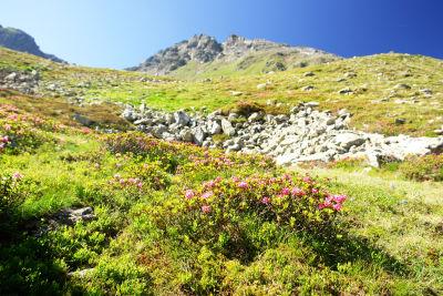 Die Nordseite des Schimpelspitz. Der Aufstieg erfolgt über den Westgrat (rechts).