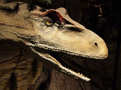 Furchterregende Dinosaurier