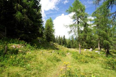 Am Gipfelplateau zum Gipfelkreuz