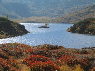 Herbstfarben am Giglachsee
