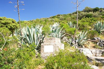 Pflanzenreichtum auf der Insel Losinj