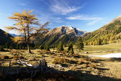 Über den Almboden zurück zur Franzlbauerhütte