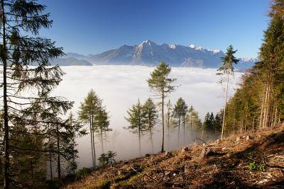 Blick über das Nebelmeer zur Prielgruppe