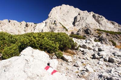 Aufstieg zur Südseite des Kalbling
