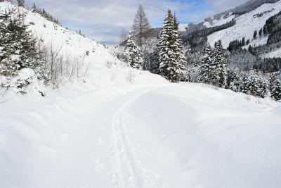 Mäßige Schneehöhe bis zum Parkplatz Sattentalalm