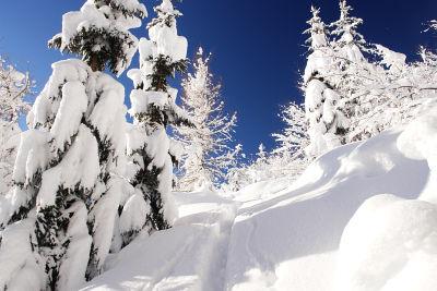 Eine Wintermärchenlandschaft