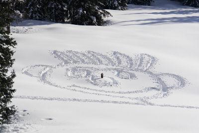 Schneegesicht mit Schneeschuh-Nasenspitze