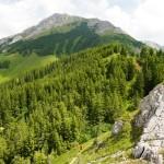 Die Hohe Veitsch - der Teufelssteug zieht im Grüngürtel oberhalb der bildmitte zum Gipfelplateau