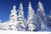 Hochwurzen-Winterweg