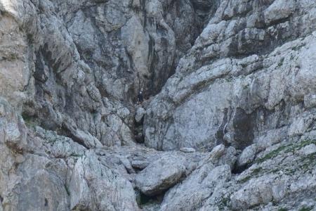 """Kletterer (Bildmitte) am Wenger Steig bei """"ganz grausligen"""" - weil nassen - Verhältnissen"""