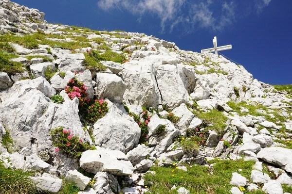 Die letzten Meter auf die St. Gallener Spitze