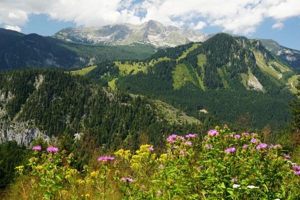 Ausblick zum Warscheneckstock beim Aufstieg auf den Lahnerkogel