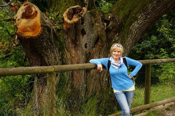 Dick - der Baum, nicht die AlpenYetin