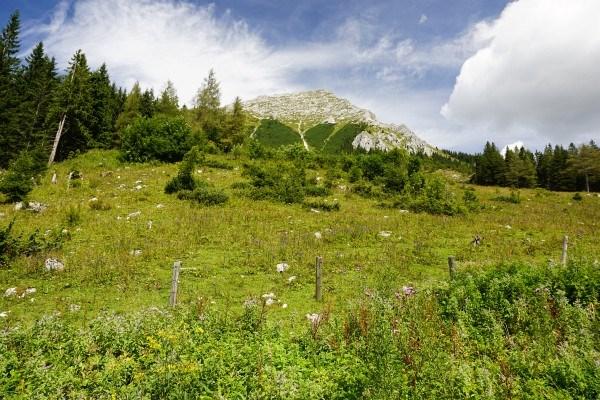 Großer Pyhrgas beim Aufstieg von der Bosruckhütte zum Rohrauerhaus