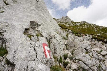 Der Hofersteig schlängelt sich geschickt über die steilen schofigen Wiesenflanken bergwärts