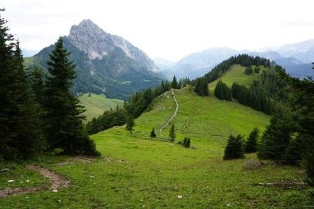 Abstieg über die Westseite Richtung Hofalm. Beim Hofalmsattel zweige ich aber nach links Richtung Rohrauerhaus ab ...