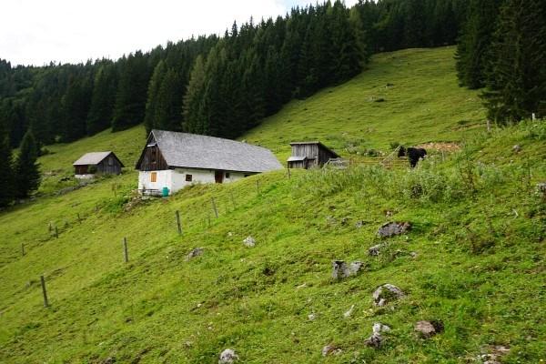 ... um wenig später noch einmal abzuzweigen - Richtung Süden zur Bosrückhütte, an der Hiaslalm vorbei.