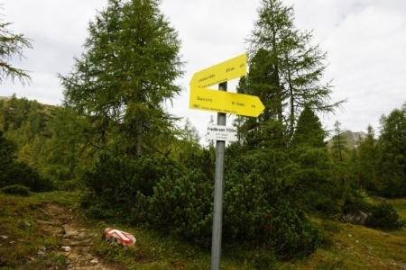 Fiedelbrunn: Weggabelung Liezener Hütte - Brunnalm