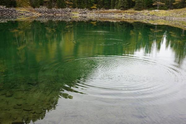 Wasserringe