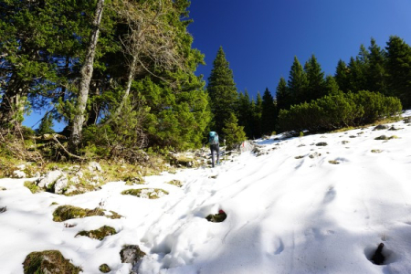 Schneefelder im Halterhüttental