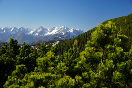 Ausblick zu Spitzmauer und Großen Priel im Toten Gebirge