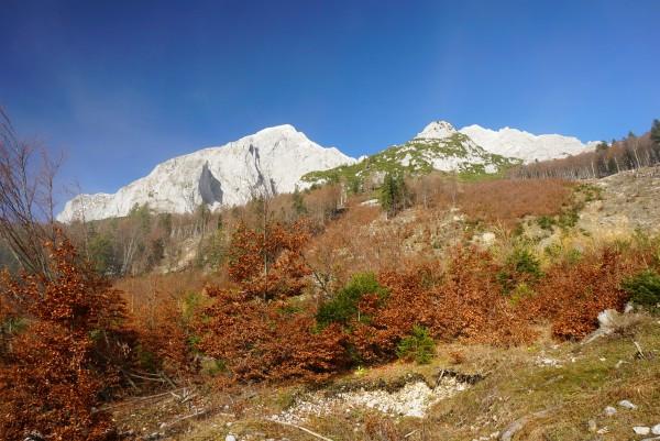 Bei ca. 1.000 Meter Seehöhe kamen wir in die Sonne - empfangen von Herbstfarben