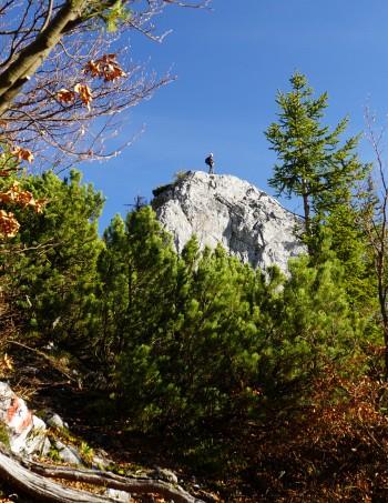 Die AlpenYetin am Feiglstein