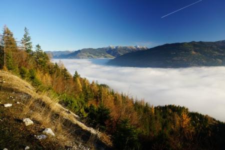 Herrliche Herbstfarben bevor wir wieder in den kalt-feuchten Nebel eintauchen.