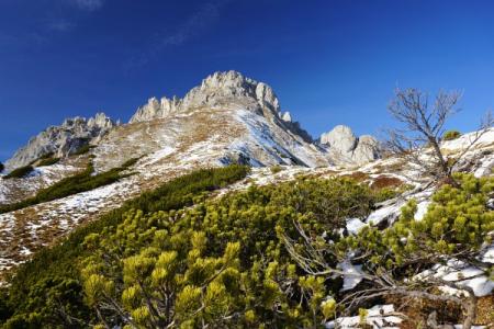 Auf den südlich ausgerichteten steileren Hängen ist es überwiegend schneefrei.