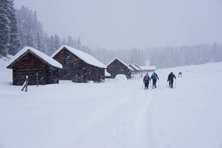 Heute gab es auf der Viehbergalm deutlich mehr Schnee als bei unserem letzten Besuch vor 2 Wochen