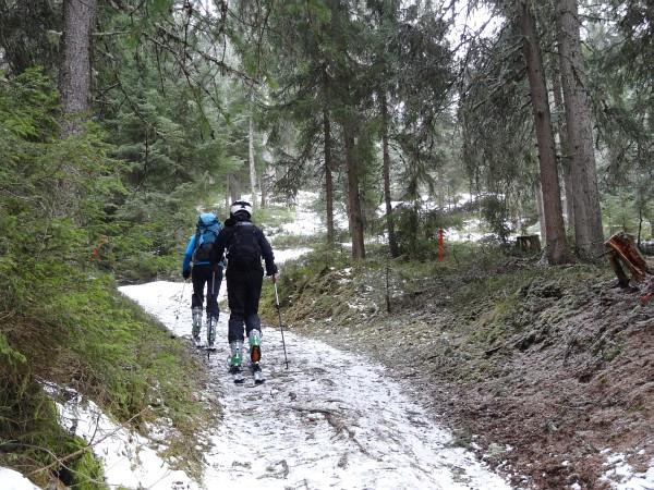Schitour auf das Kalteck. Im untersten Waldabschnitt der Tourengeher-Route ist Schnee teilweise sehr rar.