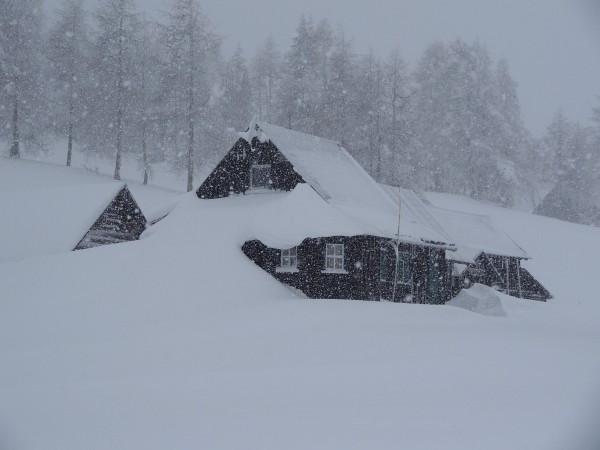 Am Tauplitzalm-Plateau wird die Sicht immer schlechter. Der Wind verstärkt den Frost.
