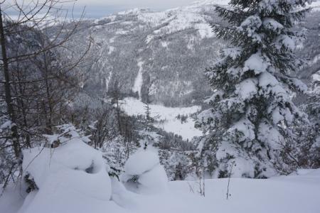 Tiefblick zur von Bad Ischl aus erreichbaren Rettenbachalm