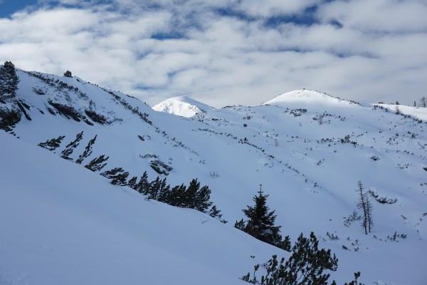 Am hügeligen Plateau oberhalb der Baumgrenze sind noch viele Latschen sichtbar.