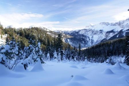 Aufstieg zwischen Fludergraben und Pötschenstein