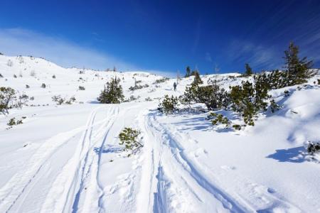 ... flachen Schlußhang, der uns zum Gipfelkreuz hinaufführt.