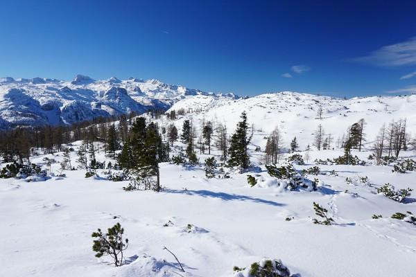 Immer wieder schweift der Blick fasziniert über die Weite des Dachsteingebirges