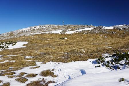 Der Gipfelbererich am Hirzberg präsentiert sich heute abgeblasen und aper
