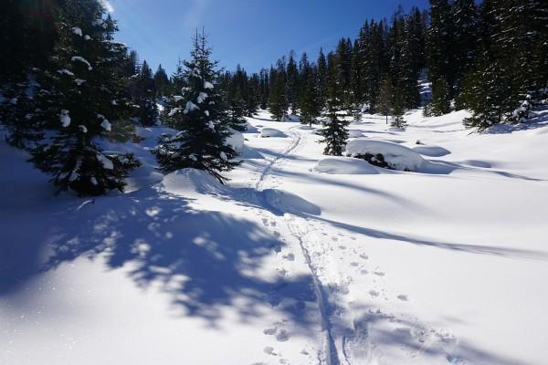 Gemächlich und unschwierig zieht sich die Spur nach oben. Neben den Schispuren gibt es auch Schneeschuhspuren.