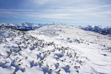 Ein Tourengeher aus Richtung Gröbming ist bei unserer Ankunft bereits am Gipfel. 4 bis 5 weitere Gröbming-Abfahrer werden etwas später vom Krippenstein herüber kommen.