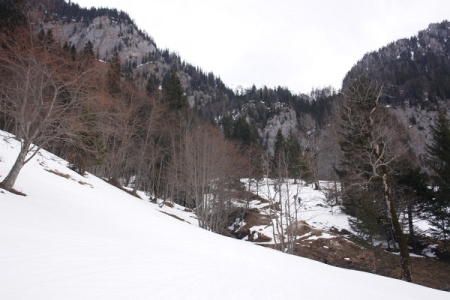 Vom Kölblwirt in Johnsbach führt die Route zunächst über Wiesen Richtung Heßhütte. Über kurze apere Passagen mussten die Schi getragen werden.