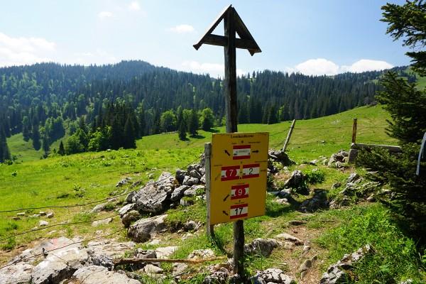 Nach dem Obersee schlängelt sich das Steiglein durch schattigen Steilwald, den man beim Leonhardikreuz hinter sich läßt.