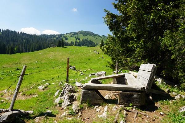 Gemütliches Rastbankerl beim Leonhardikreuz. Vorne in der Wiese die Jugendgruppe, die uns beim Aufstieg durch den Steilwald überholt hat.