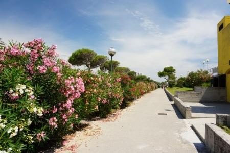 Am Strand von Lignano Pineta