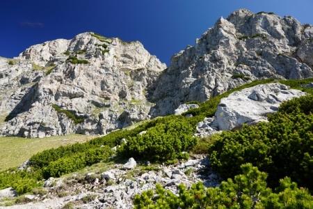 In Bildmitte die Schlüsselstelle am Reißtalersteig: eine kurze, steile Felspassage