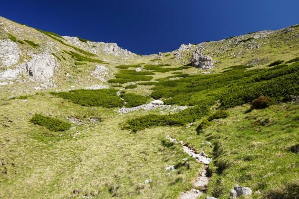 Nach der etwa 70 Höhenmeter umfassenden anspruchsvolleren Passage geht es in einfachem Wandergelände gemütlich weiter.