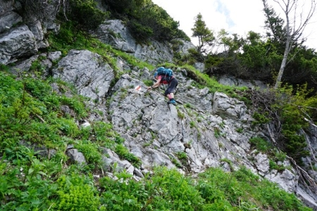"""Im untersten Abschnitt am Karl-Kantner-Steig - """"ein schöner Steig"""" -  wie uns ein entgegenkommender Wanderer begeistert erklärte."""