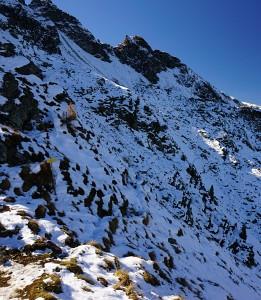 Schnee im steilen Nordhang
