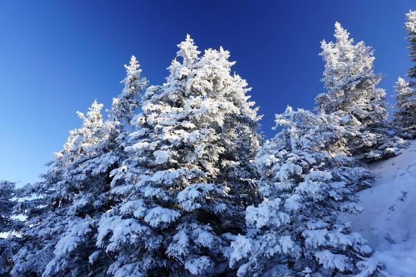 Winterimpressionen am Kochofen